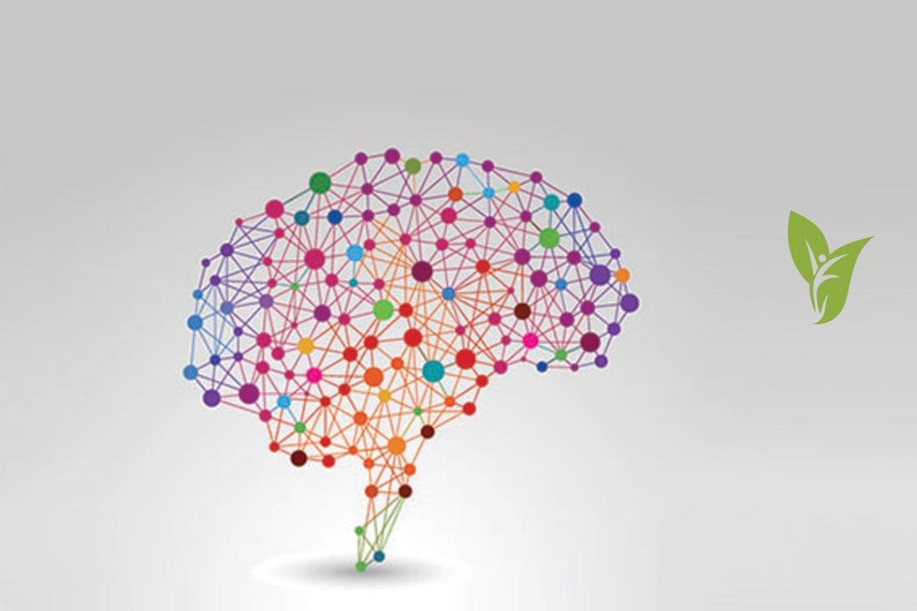 Mental Health Therapist Boca Raton